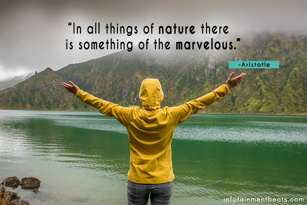 Aristotle-nature-is-marvelous