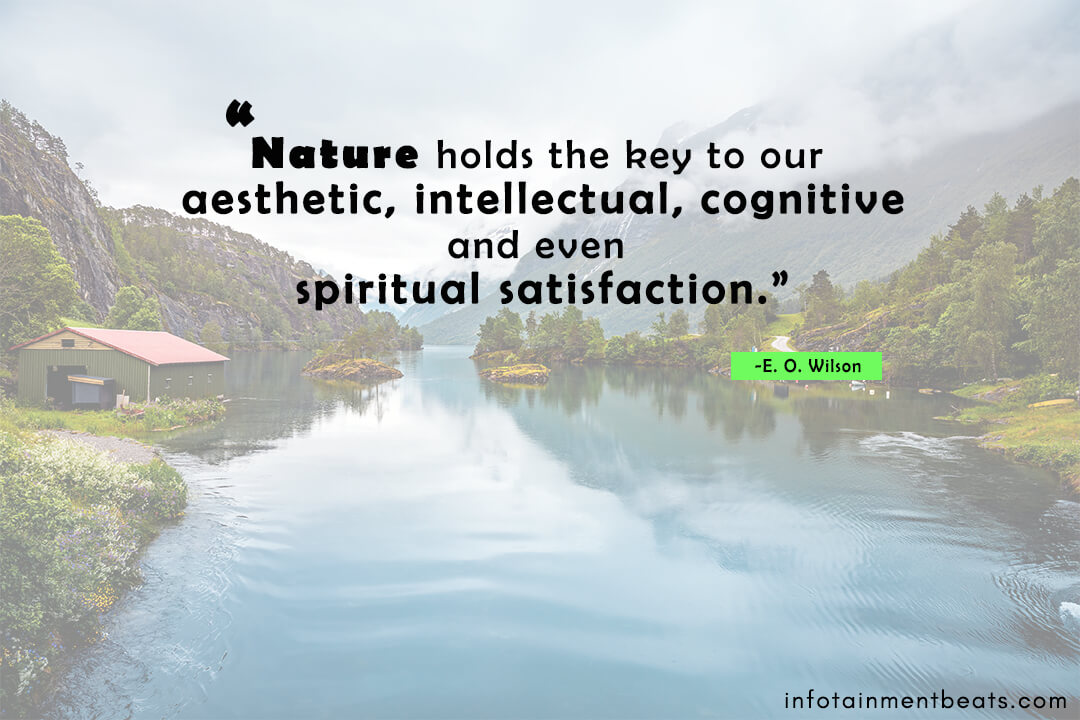 E.-O.-Wilson-quote-about-nature