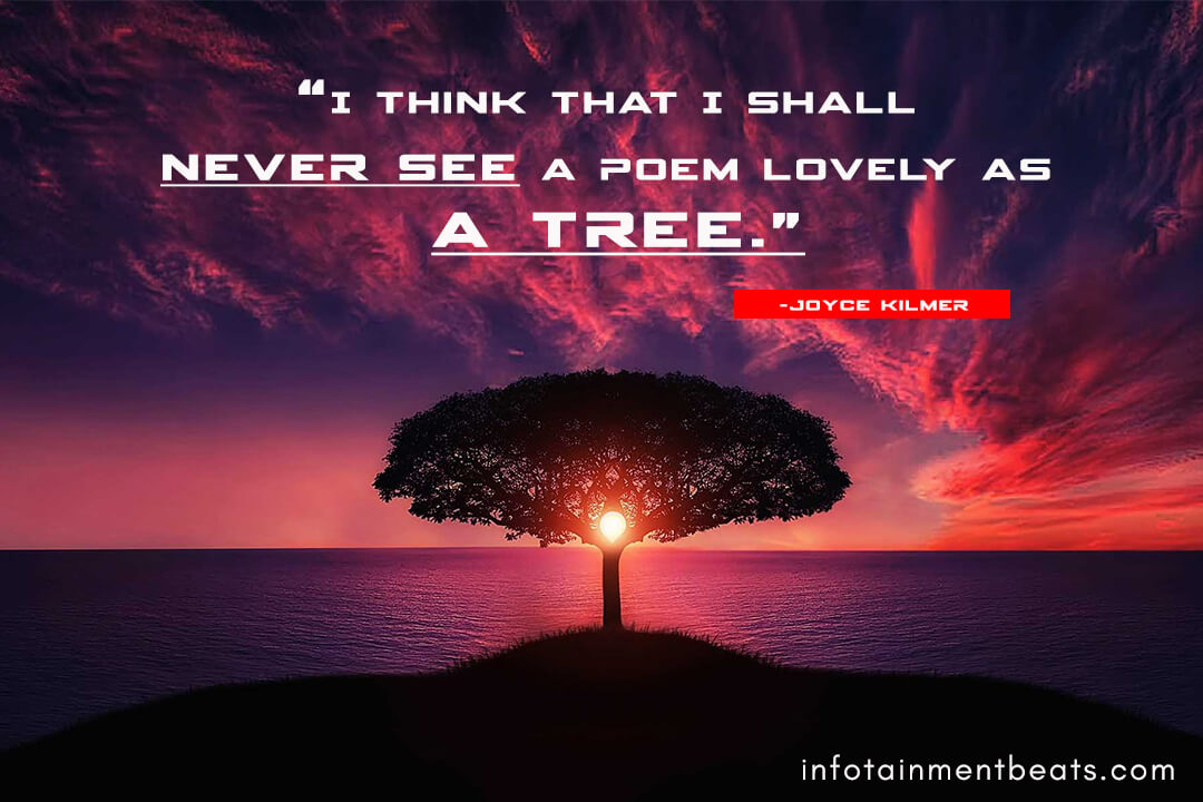 Joyce-Kilmer-quote-about-trees