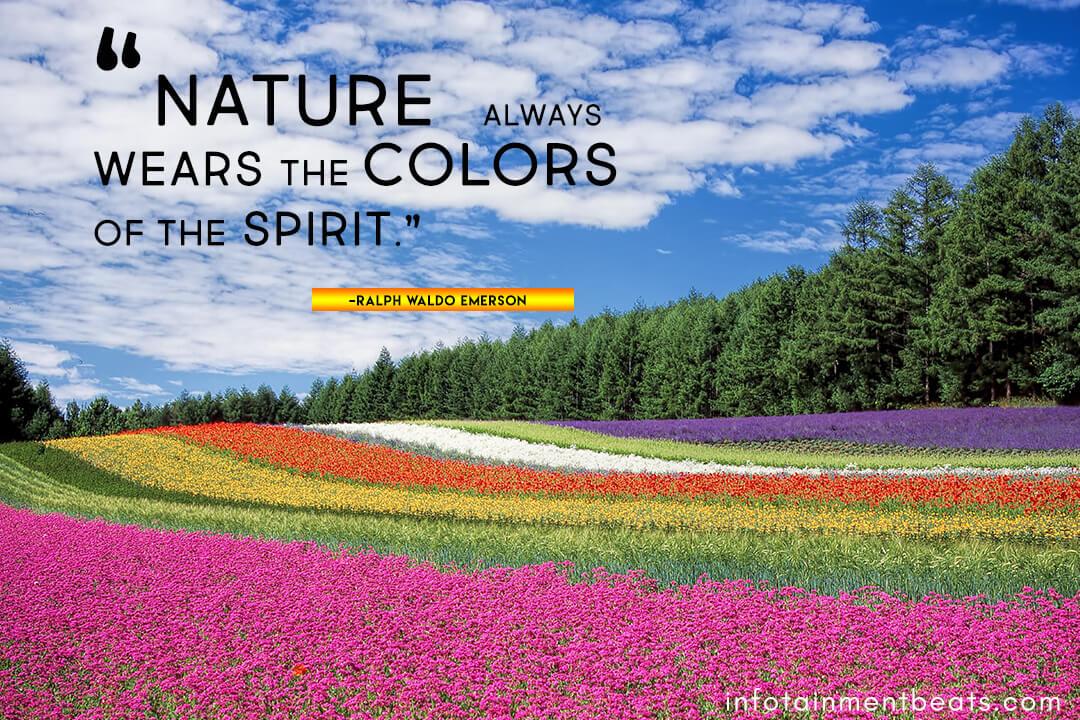 Ralph-Waldo-Emerson-nature-quote