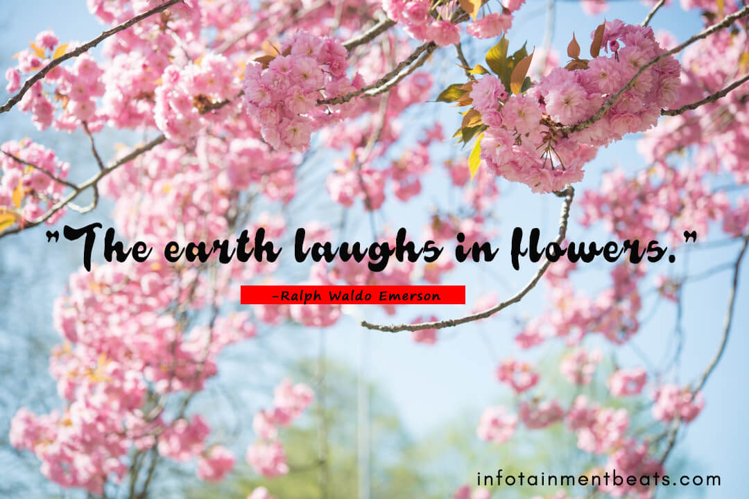 Ralph-Waldo-Emerson-quote-about-earth-laughs