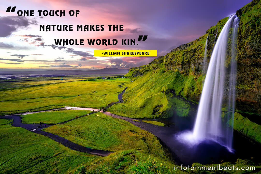 William-Shakespeare-says-about-touching-nature