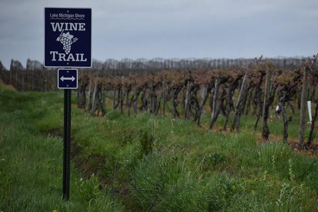 lake michigan shore wine trail tours