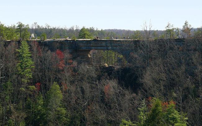 natural bridge state resort park Kentucky