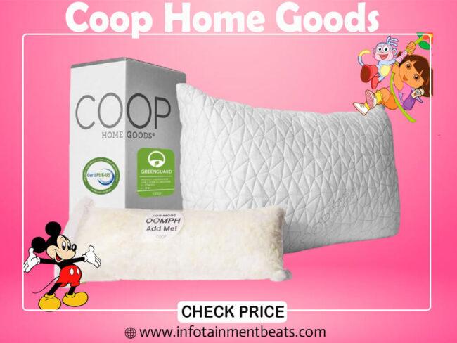 2- Coop Home Goods
