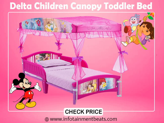 3- Delta Children Canopy Toddler Bed