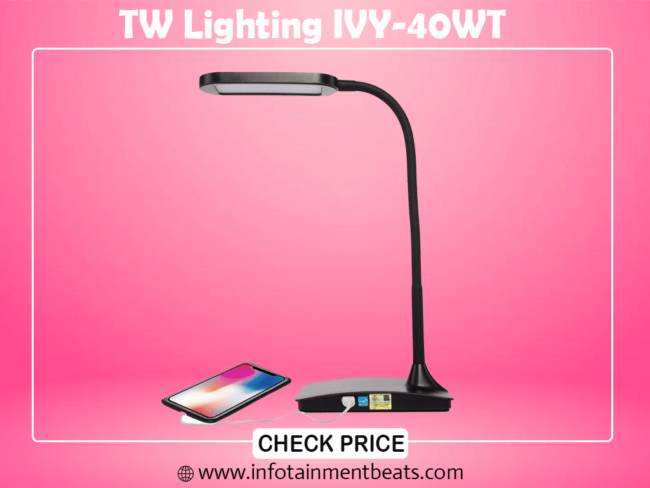 5 - TW Lighting IVY-40WT