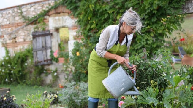 less refresh job after retirement