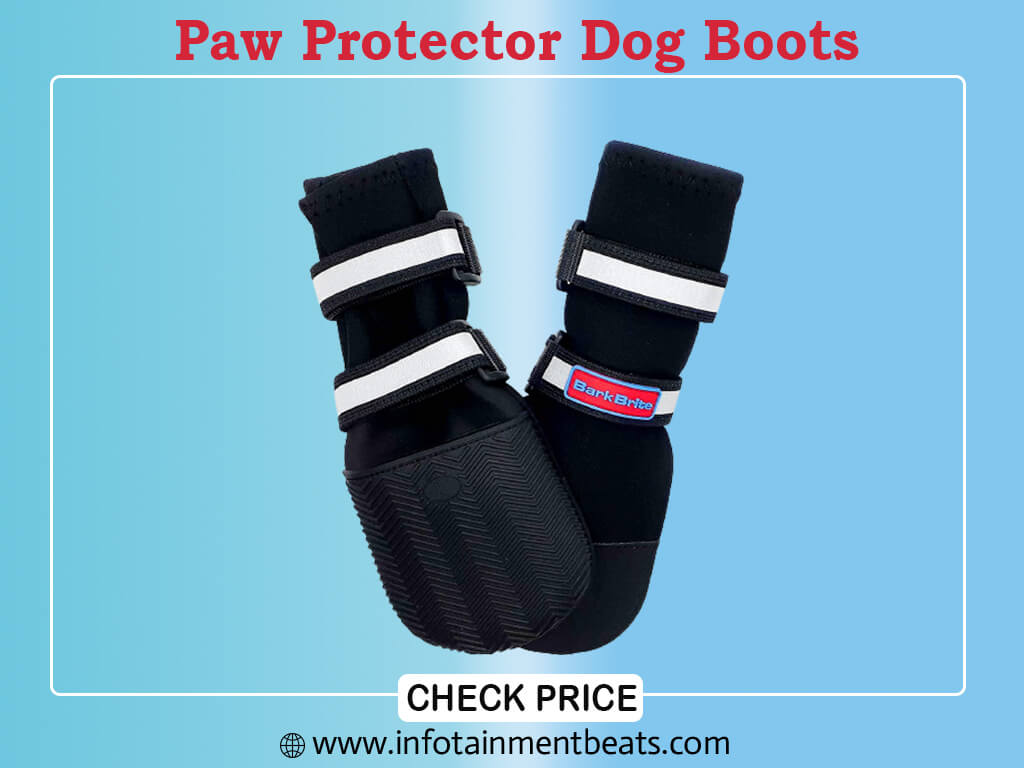 Bark Brite All Weather Neoprene Paw Protector Dog Boots